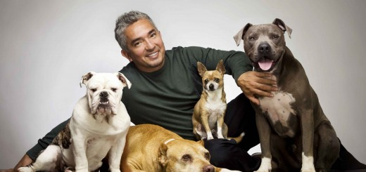 César-Millán-el-encantador-de-perros